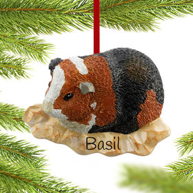 Personalized Guinea Pig