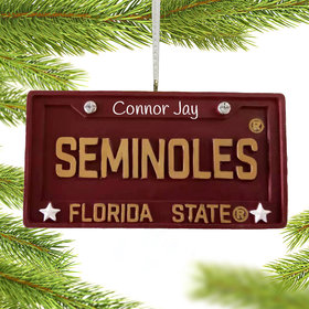 Personalized Florida State License Plate